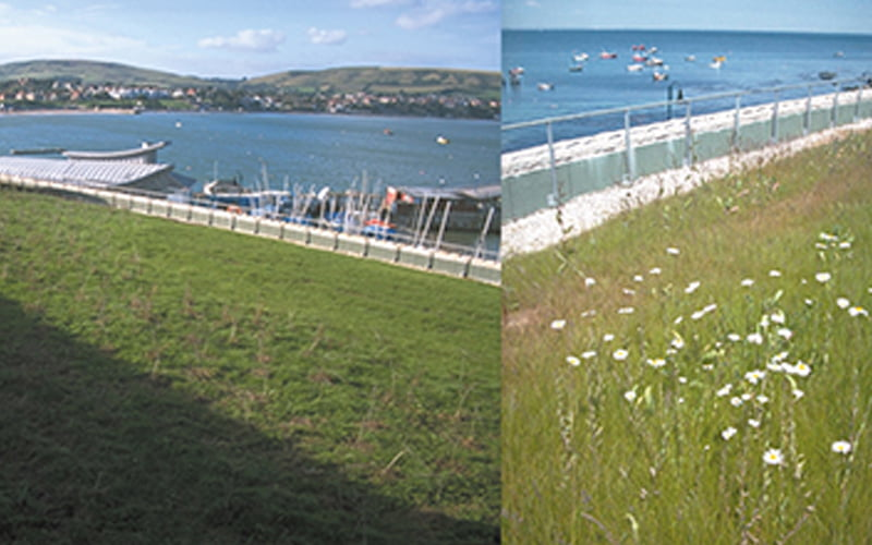 Sewage Treatment Works (STW) for Swanage