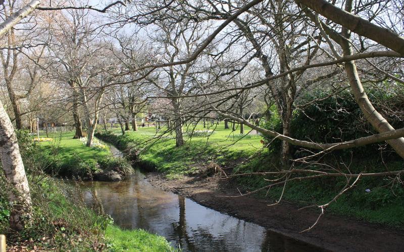 Flood Risk Management – Roath, Cardiff