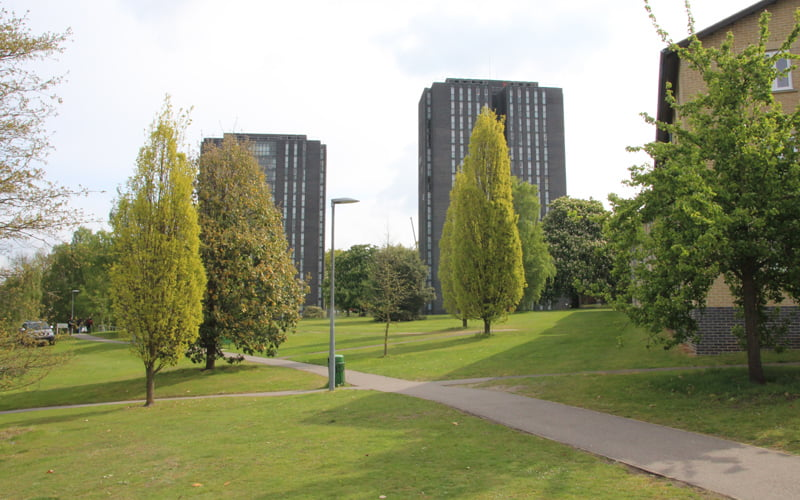 University of Essex scoops Green Flag award